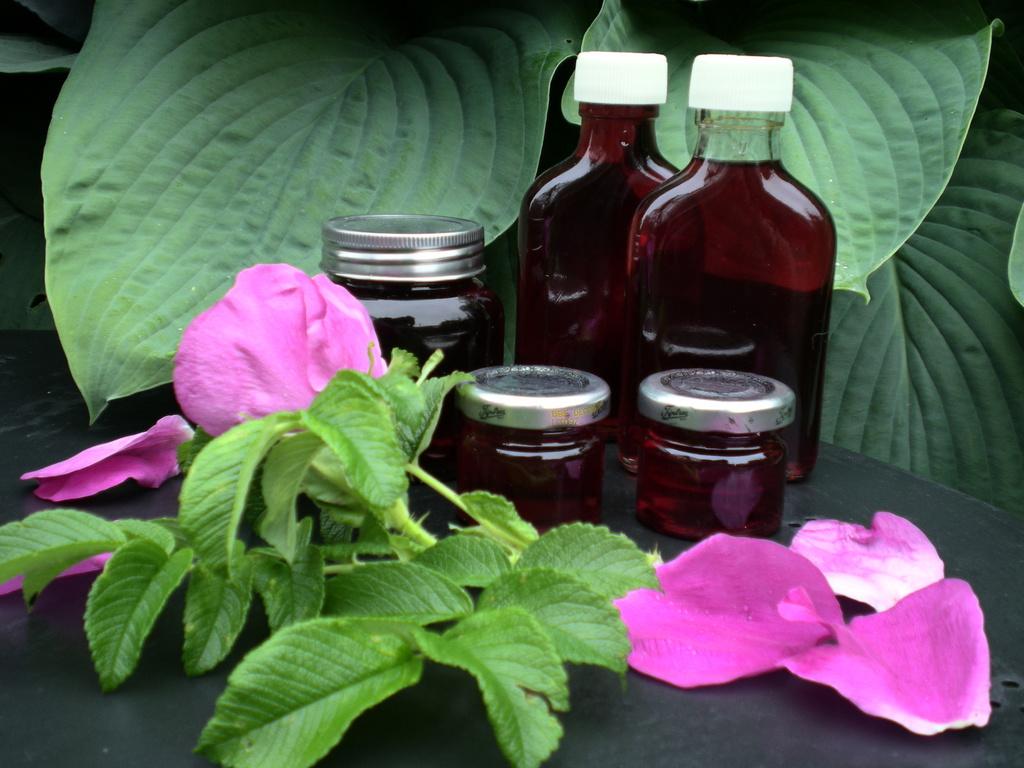 Rosensirup på hybenroser…